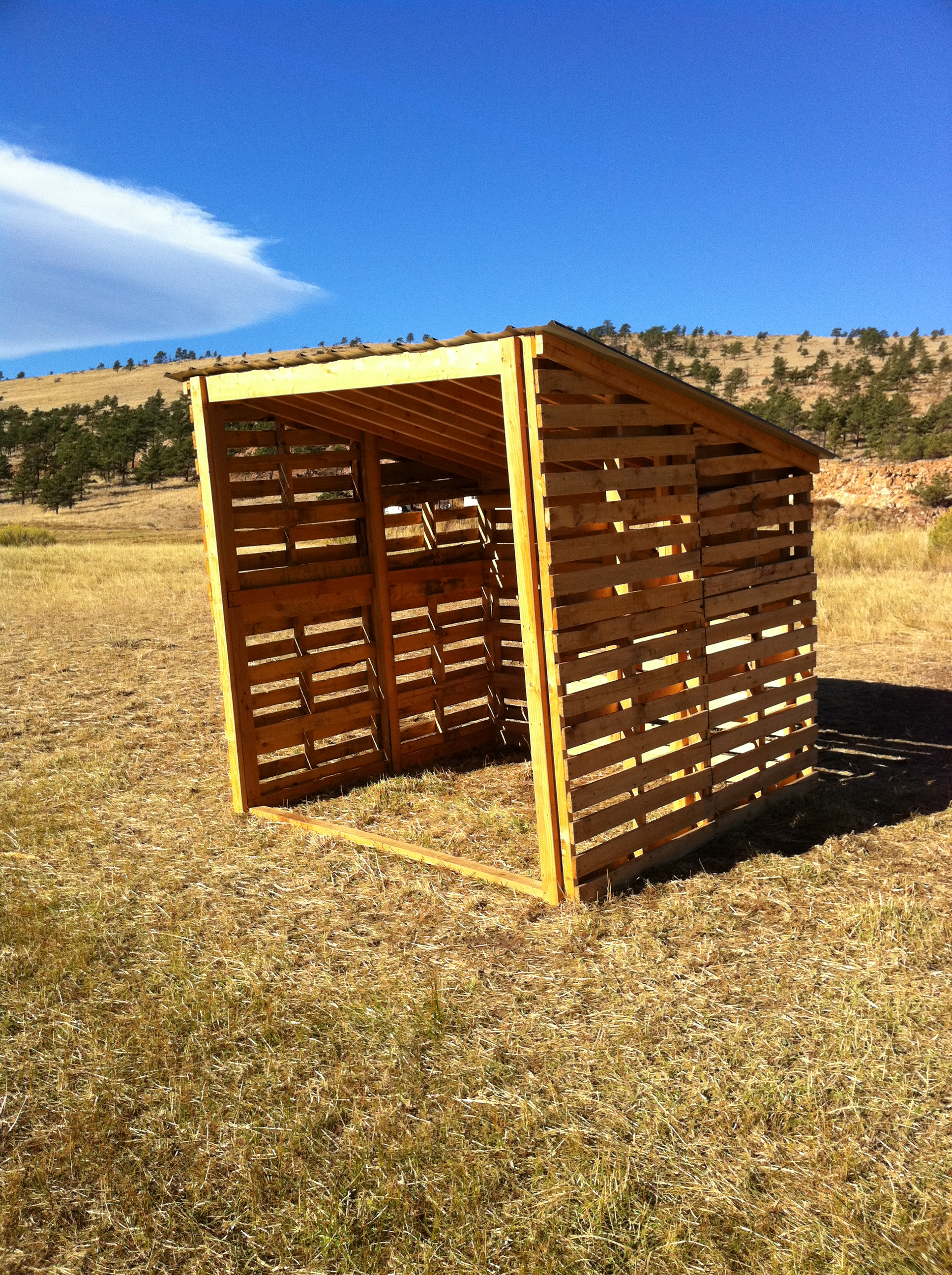 Small Pallet Shed Projects Pinterest